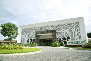 mangrove-exterior